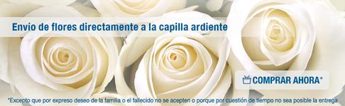 Compra de flores online